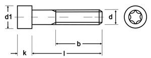 din-912-zylinderkopfschrauben-tz